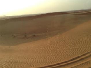 Endless Desert